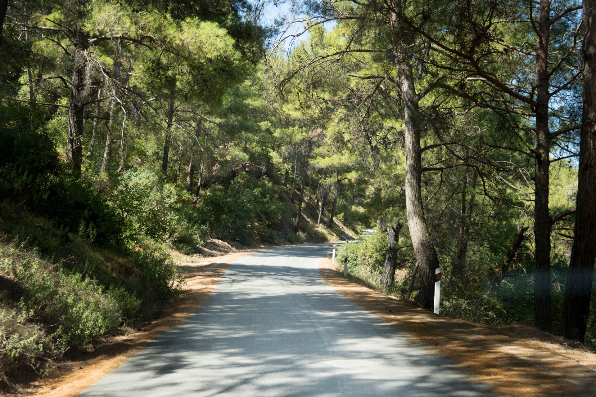 Foundoukli Road through Mt Profitis Ilias (1 of 1)